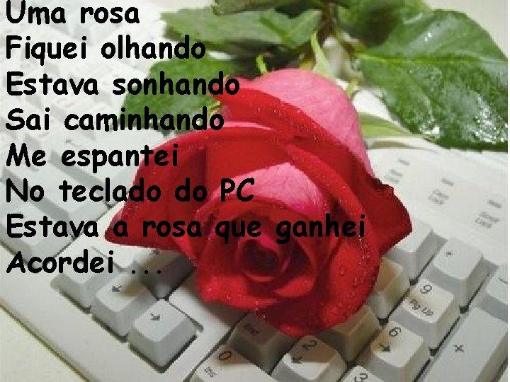 Uma rosa Fiquei olhando Estava sonhando Sai caminhando Me espantei No teclado do PC
