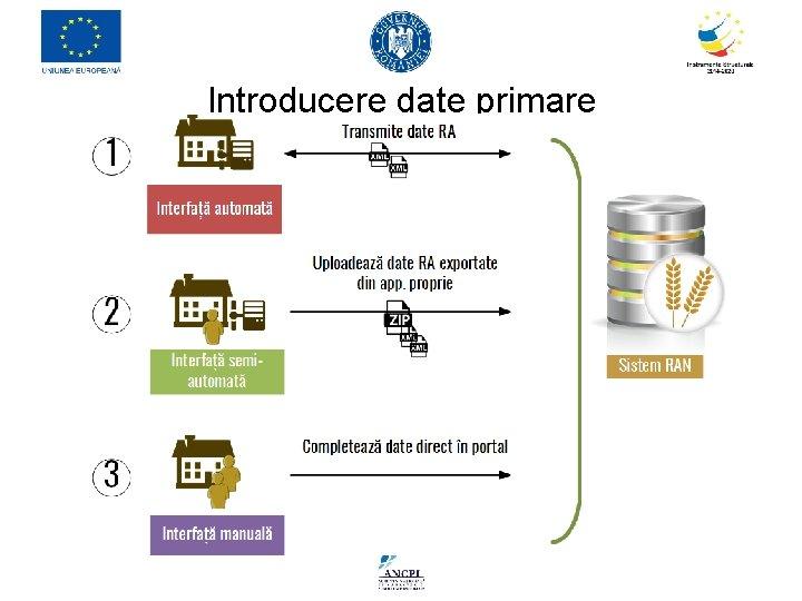 Introducere date primare