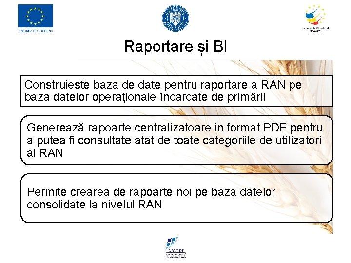 Raportare și BI Construieste baza de date pentru raportare a RAN pe baza datelor