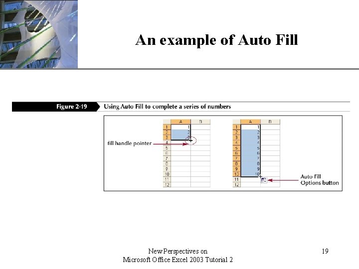 An example of Auto Fill New Perspectives on Microsoft Office Excel 2003 Tutorial 2