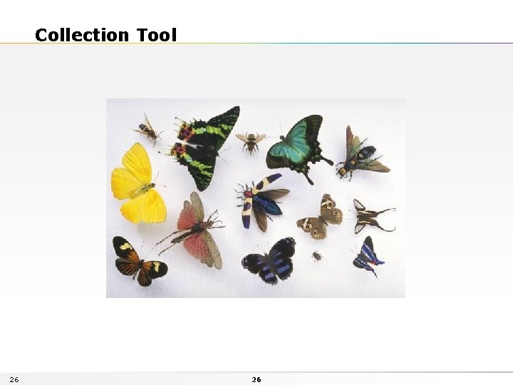 Collection Tool 26 26