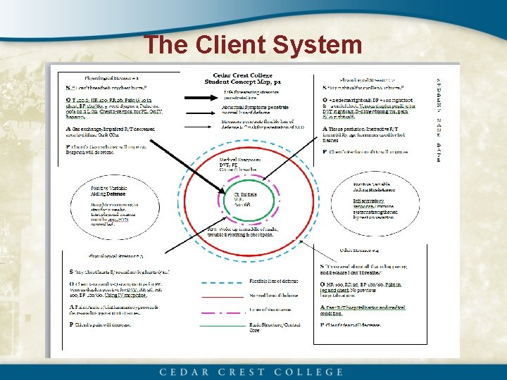 The Client System