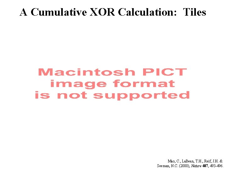 A Cumulative XOR Calculation: Tiles Mao, C. , La. Bean, T. H. , Reif,