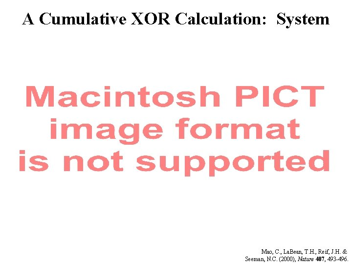 A Cumulative XOR Calculation: System Mao, C. , La. Bean, T. H. , Reif,