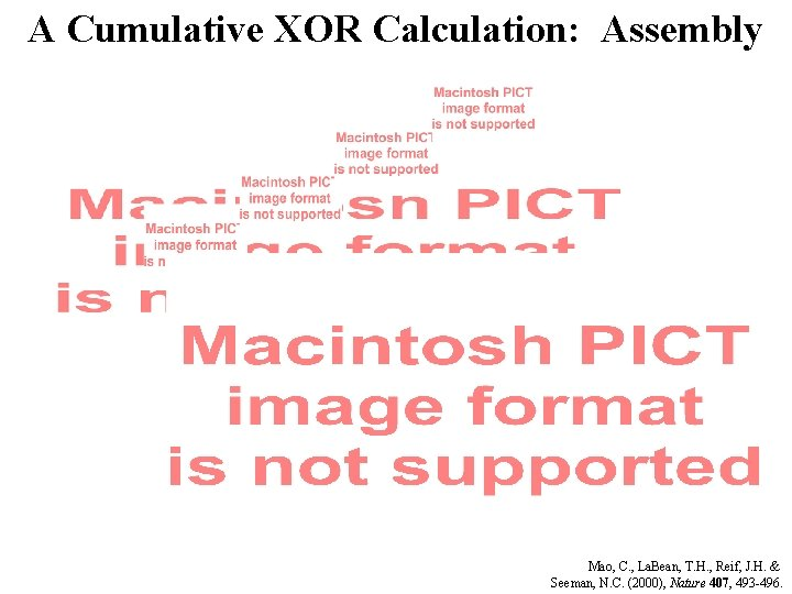 A Cumulative XOR Calculation: Assembly Mao, C. , La. Bean, T. H. , Reif,