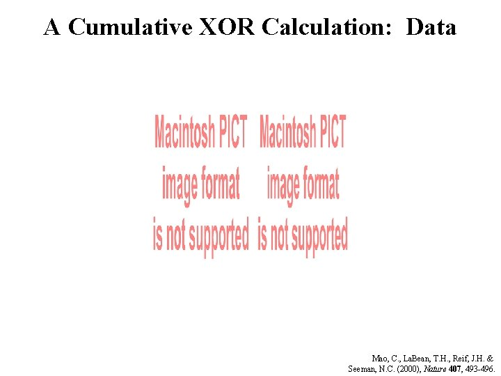 A Cumulative XOR Calculation: Data Mao, C. , La. Bean, T. H. , Reif,