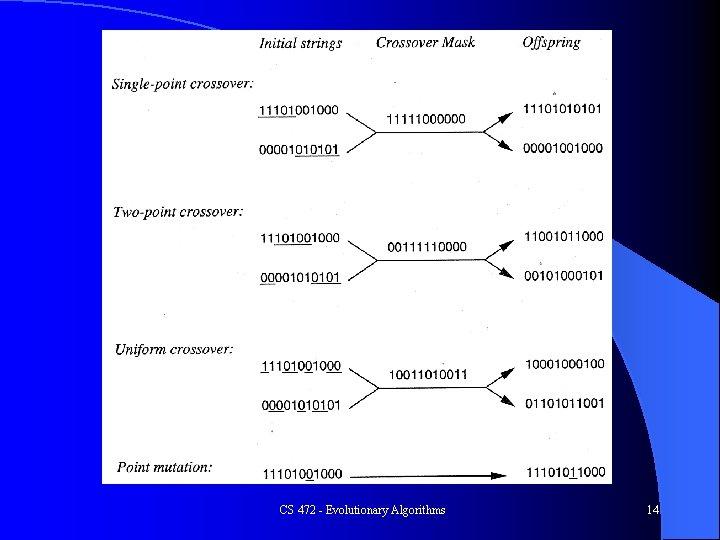 CS 472 - Evolutionary Algorithms 14