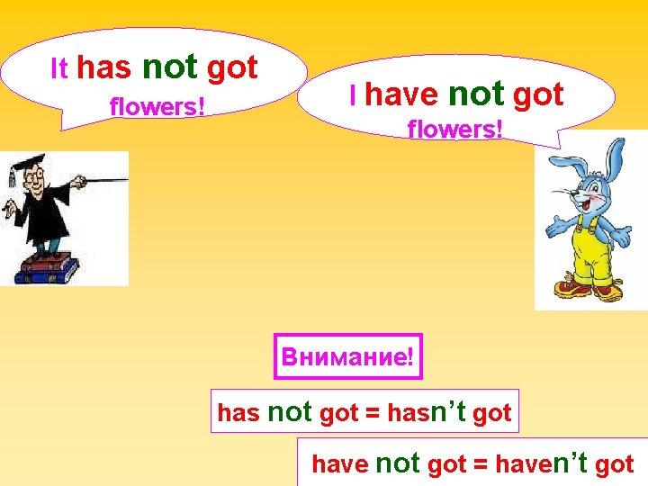 It has not got flowers! I have not got flowers! Внимание! has not got