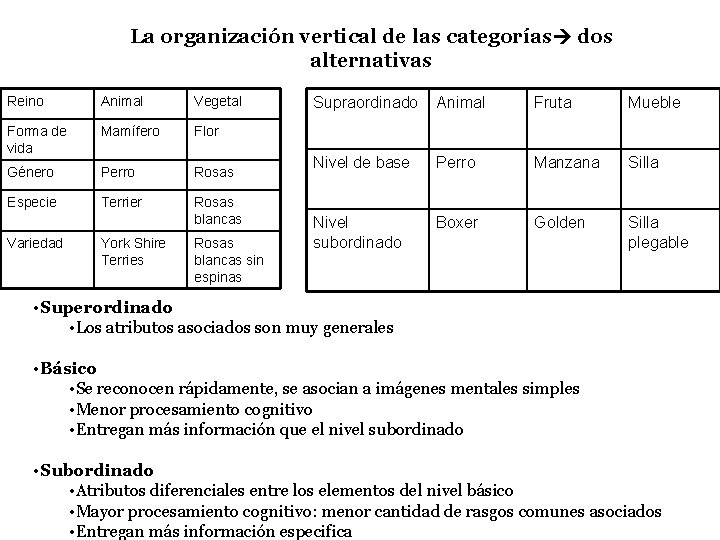 La organización vertical de las categorías dos alternativas Reino Animal Vegetal Forma de vida