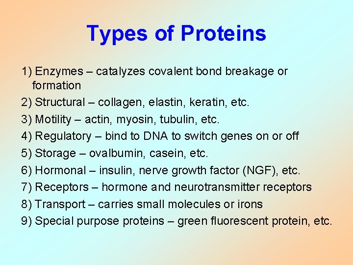 Types of Proteins 1) Enzymes – catalyzes covalent bond breakage or formation 2) Structural