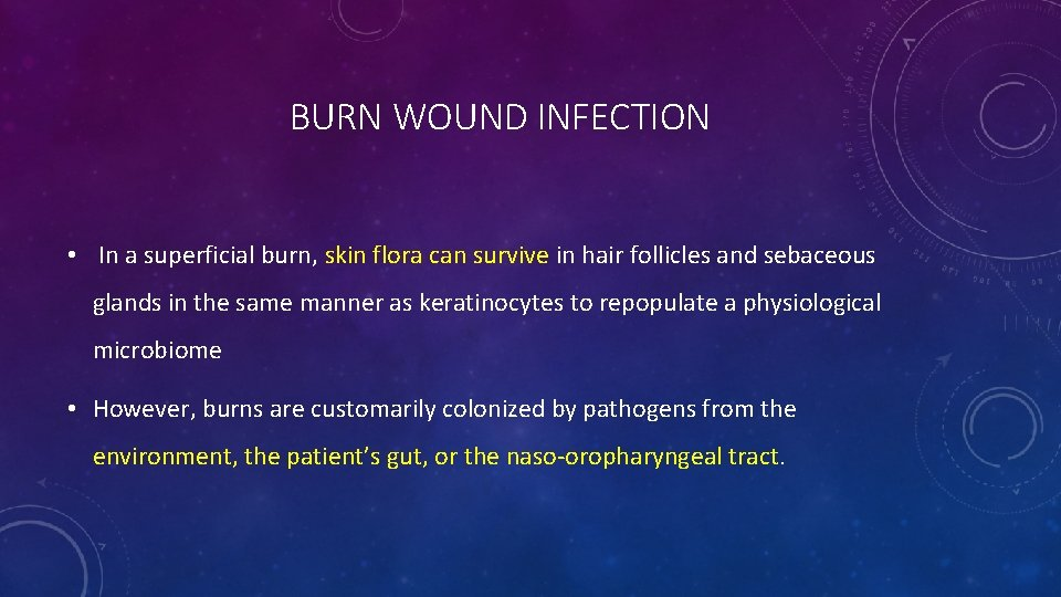 BURN WOUND INFECTION • In a superficial burn, skin flora can survive in hair
