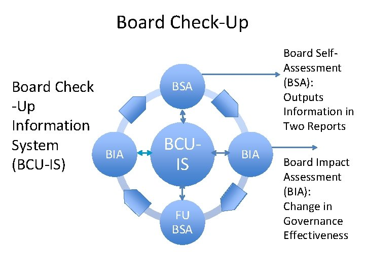 Board Check-Up Board Check -Up Information System BIA (BCU-IS) Board Self. Assessment (BSA): Outputs