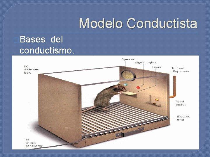 Modelo Conductista �Bases del conductismo. �La caja de Skinner.
