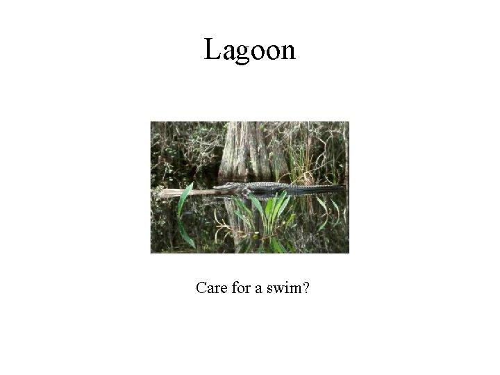 Lagoon Care for a swim?