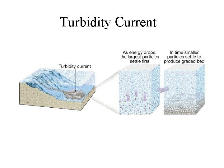 Turbidity Current