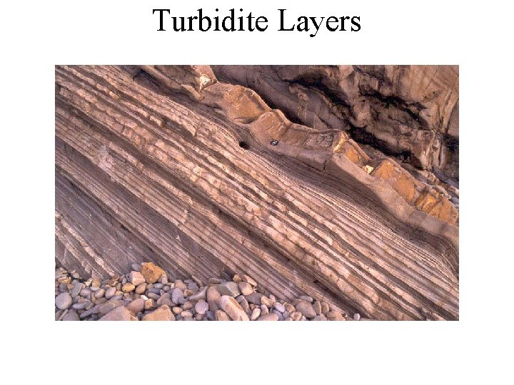 Turbidite Layers