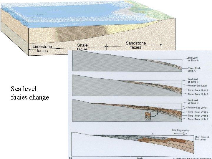 Sea level facies change