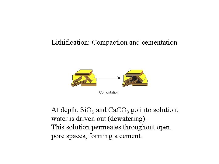 Lithification: Compaction and cementation At depth, Si. O 2 and Ca. CO 3 go