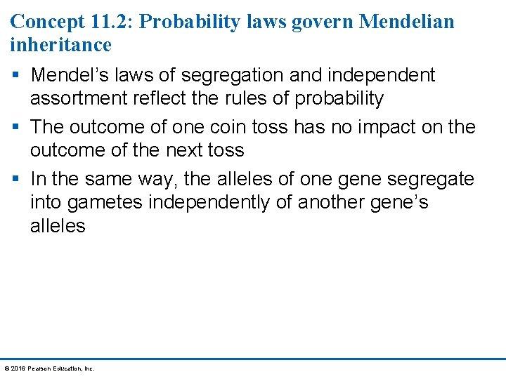 Concept 11. 2: Probability laws govern Mendelian inheritance § Mendel's laws of segregation and