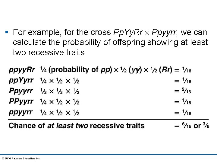 § For example, for the cross Pp. Yy. Rr Ppyyrr, we can calculate the