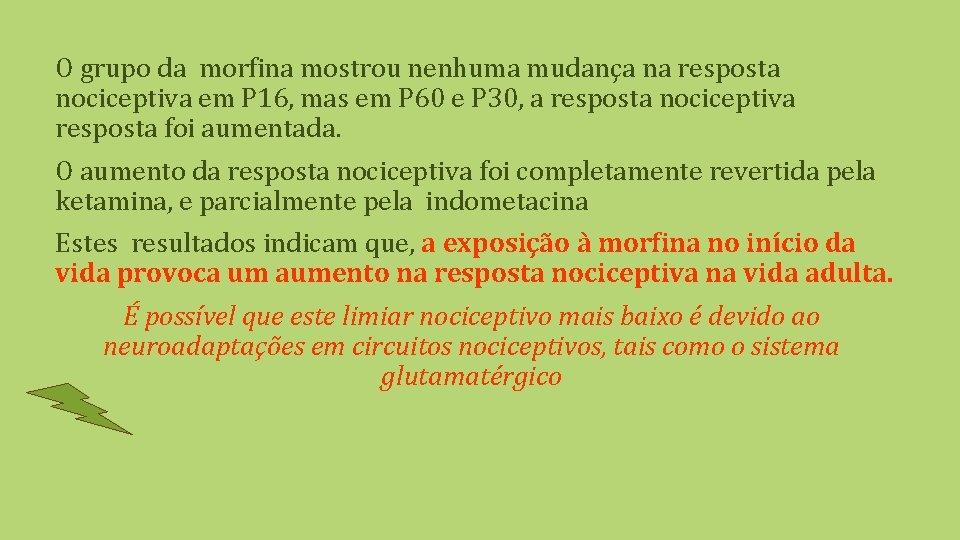 O grupo da morfina mostrou nenhuma mudança na resposta nociceptiva em P 16, mas