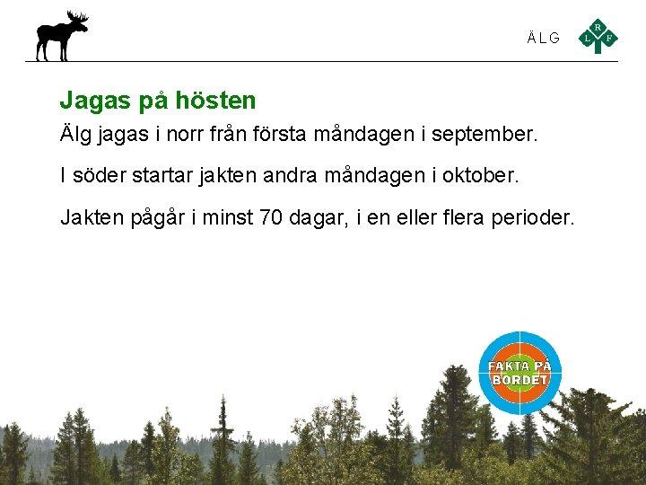 ÄLG Jagas på hösten Älg jagas i norr från första måndagen i september. I