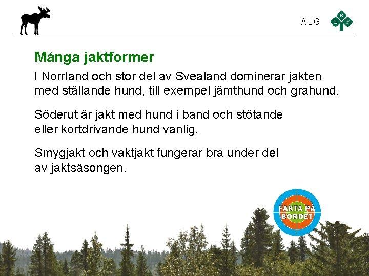 ÄLG Många jaktformer I Norrland och stor del av Svealand dominerar jakten med ställande