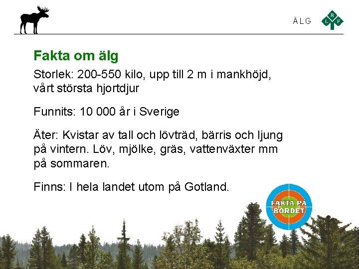 ÄLG Fakta om älg Storlek: 200 -550 kilo, upp till 2 m i mankhöjd,