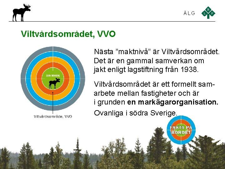 """ÄLG Viltvårdsområdet, VVO Nästa """"maktnivå"""" är Viltvårdsområdet. Det är en gammal samverkan om jakt"""