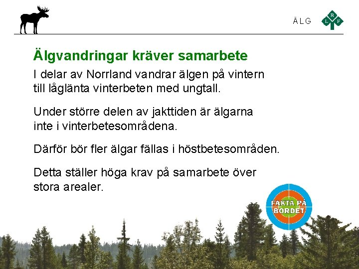 ÄLG Älgvandringar kräver samarbete I delar av Norrland vandrar älgen på vintern till låglänta