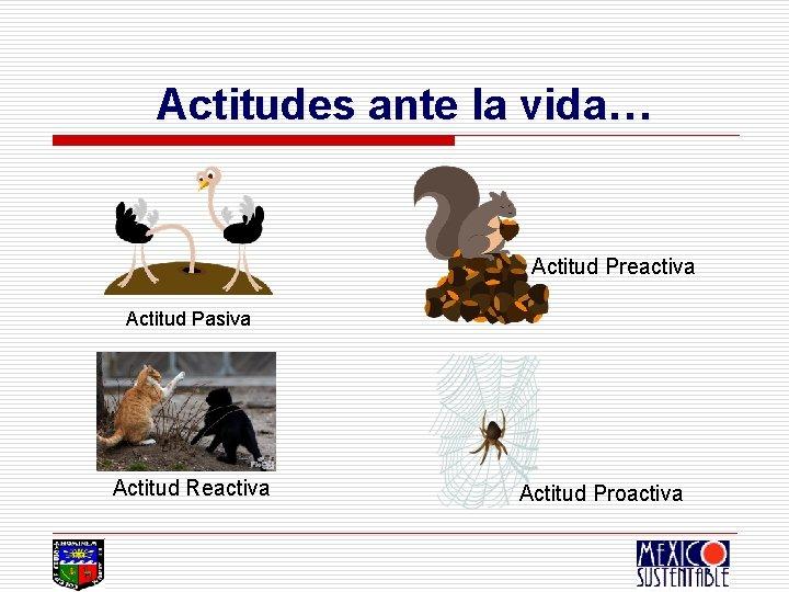 Actitudes ante la vida… Actitud Preactiva Actitud Pasiva Actitud Reactiva Actitud Proactiva