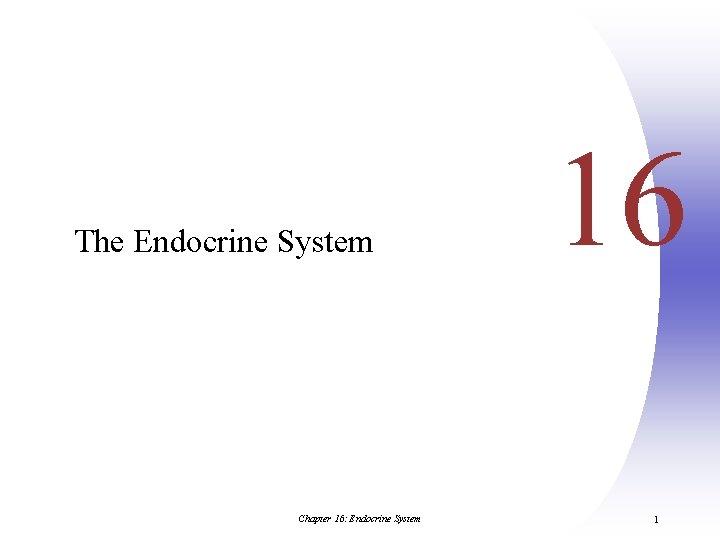 The Endocrine System Chapter 16: Endocrine System 16 1