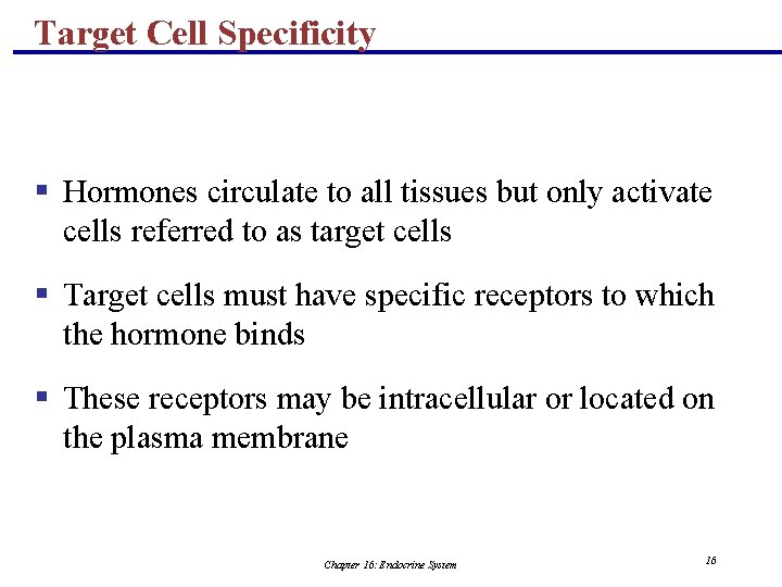 Target Cell Specificity § Hormones circulate to all tissues but only activate cells referred