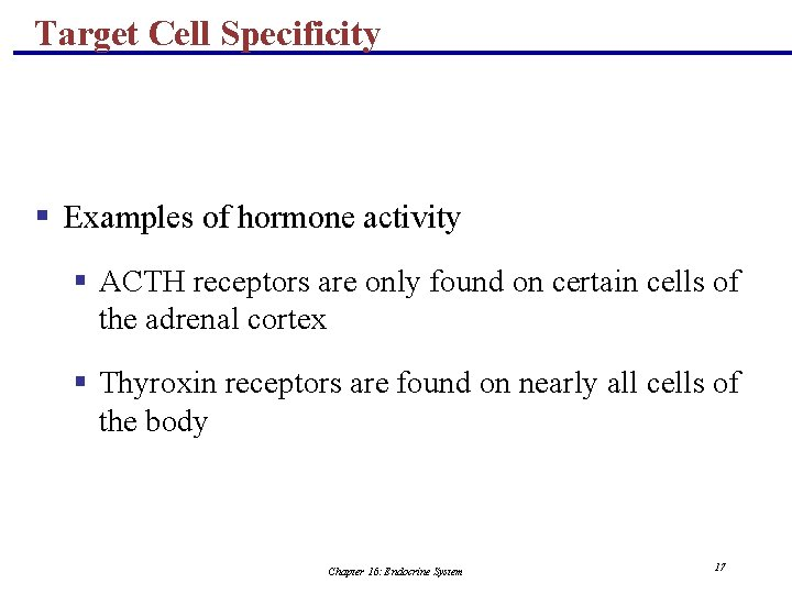 Target Cell Specificity § Examples of hormone activity § ACTH receptors are only found