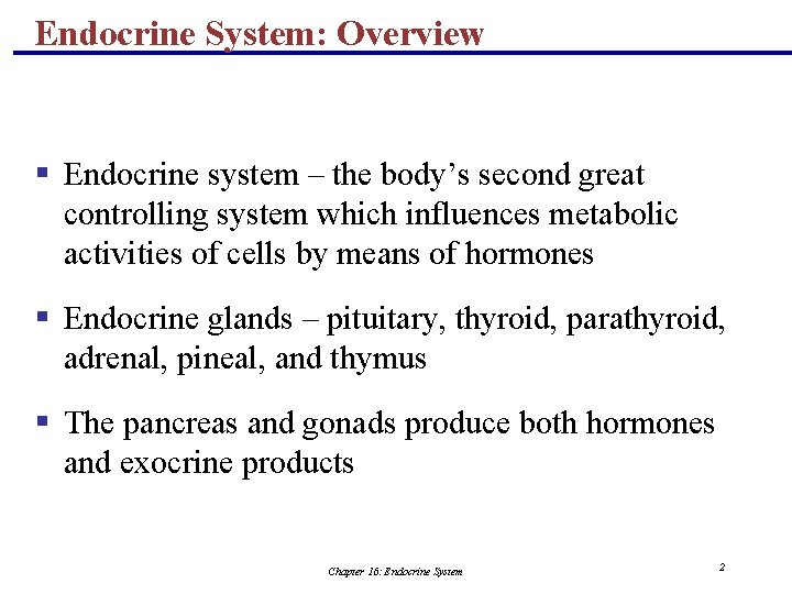Endocrine System: Overview § Endocrine system – the body's second great controlling system which