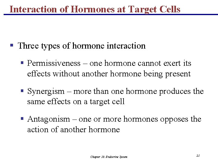 Interaction of Hormones at Target Cells § Three types of hormone interaction § Permissiveness