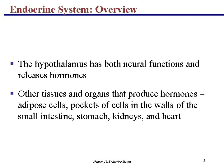 Endocrine System: Overview § The hypothalamus has both neural functions and releases hormones §