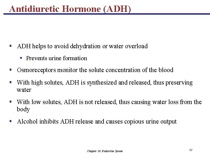 Antidiuretic Hormone (ADH) § ADH helps to avoid dehydration or water overload § Prevents