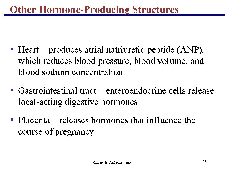 Other Hormone-Producing Structures § Heart – produces atrial natriuretic peptide (ANP), which reduces blood