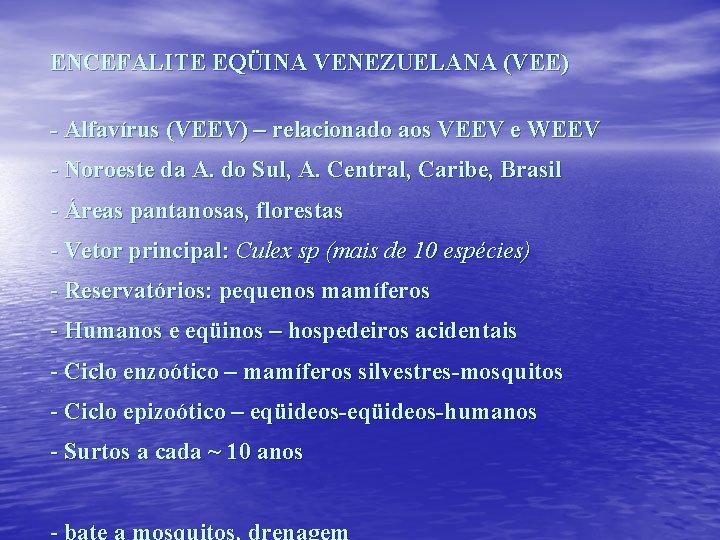ENCEFALITE EQÜINA VENEZUELANA (VEE) - Alfavírus (VEEV) – relacionado aos VEEV e WEEV -