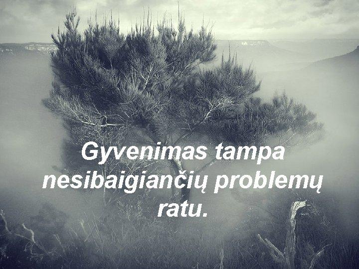 Gyvenimas tampa nesibaigiančių problemų ratu.