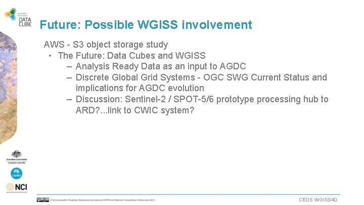 Future: Possible WGISS involvement AWS - S 3 object storage study • The Future: