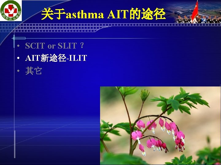 关于asthma AIT的途径 • SCIT or SLIT ? • AIT新途径-ILIT • 其它