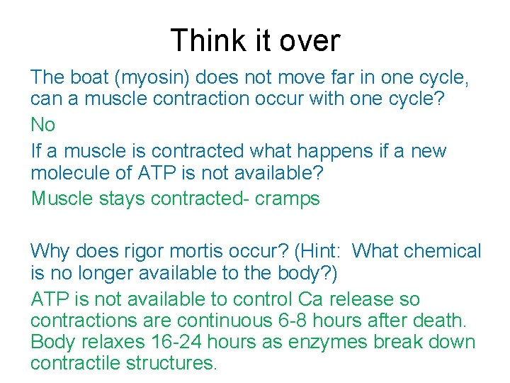 Think it over The boat (myosin) does not move far in one cycle, can