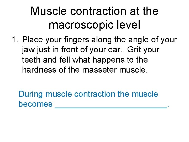 Muscle contraction at the macroscopic level 1. Place your fingers along the angle of