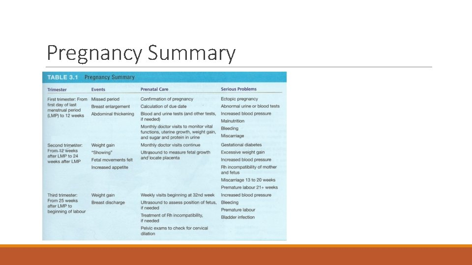 Pregnancy Summary