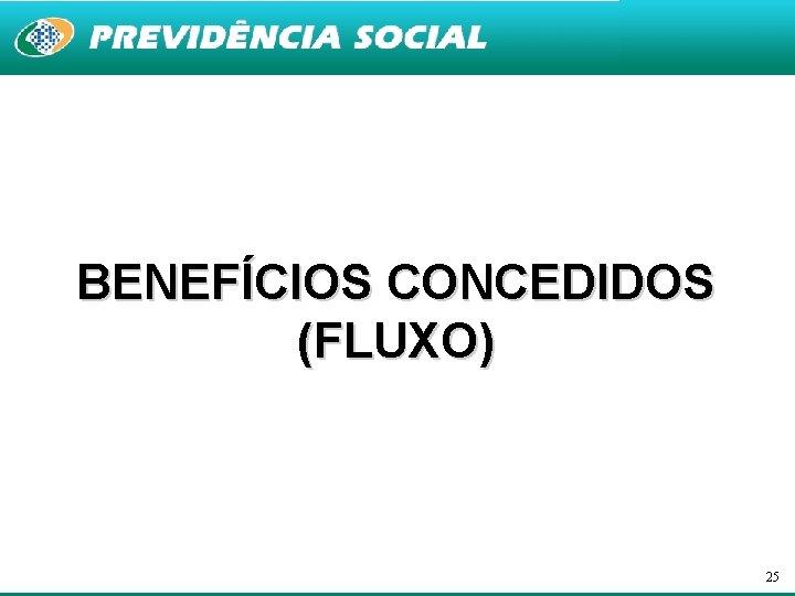 BENEFÍCIOS CONCEDIDOS (FLUXO) 25