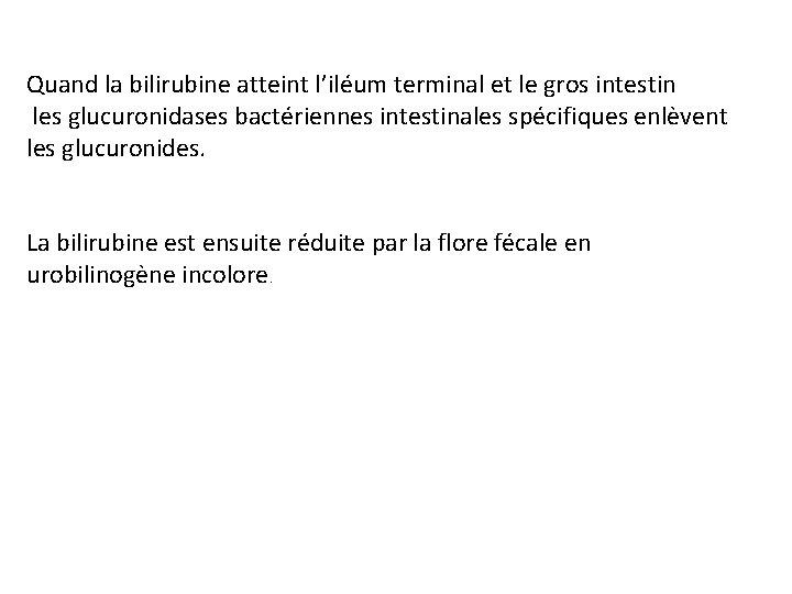 Quand la bilirubine atteint l'iléum terminal et le gros intestin les glucuronidases bactériennes intestinales