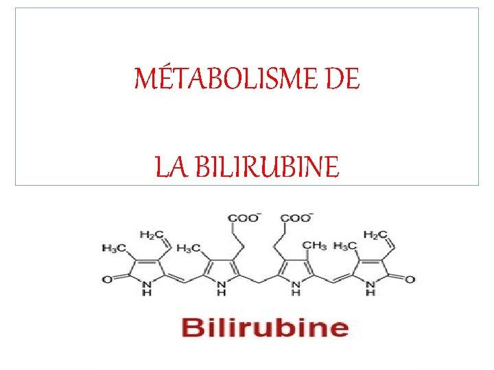 MÉTABOLISME DE LA BILIRUBINE