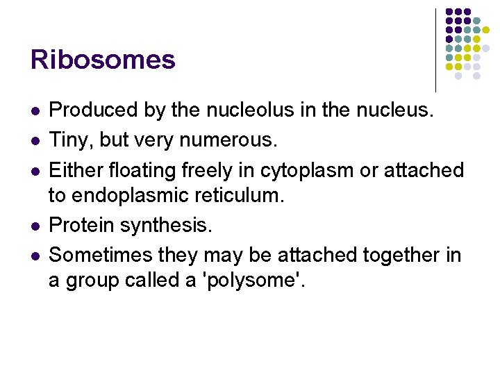 Ribosomes l l l Produced by the nucleolus in the nucleus. Tiny, but very